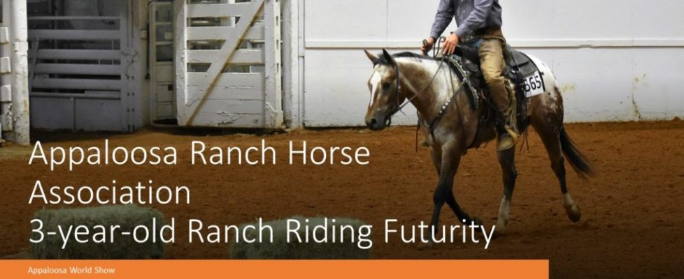 Appaloosa Ranch Horse Association